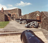 A Cannon in the Castle