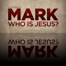 mark_header