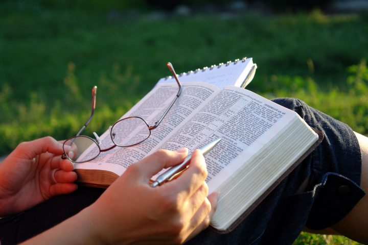 Bible open in garden